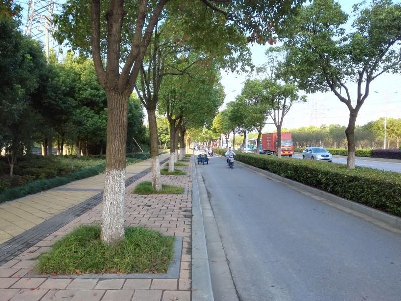 05_SIP-boulevard_20150908_071400